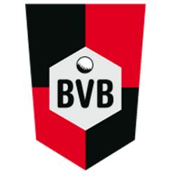 partner-bvb-verein-250