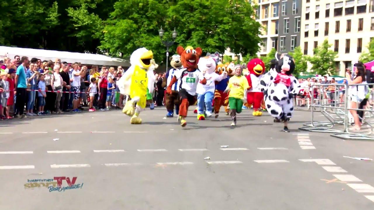 Klettergurt Herren Leichtathletik : Turnfest 2017 archive ⋆ hauptstadtsporttv