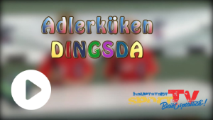 dingsda-playliste.png